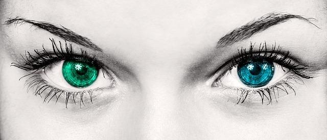 Nos yeux sont redoutables accueil for Regard dans le miroir que tu vois